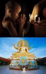 279 przeciwienstwo wyznawca guru