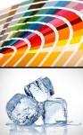 310 przeciwienstwo kolorowy bezbarwny
