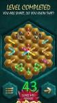 Crystalux Advanced level 43 walkthrough gameplay